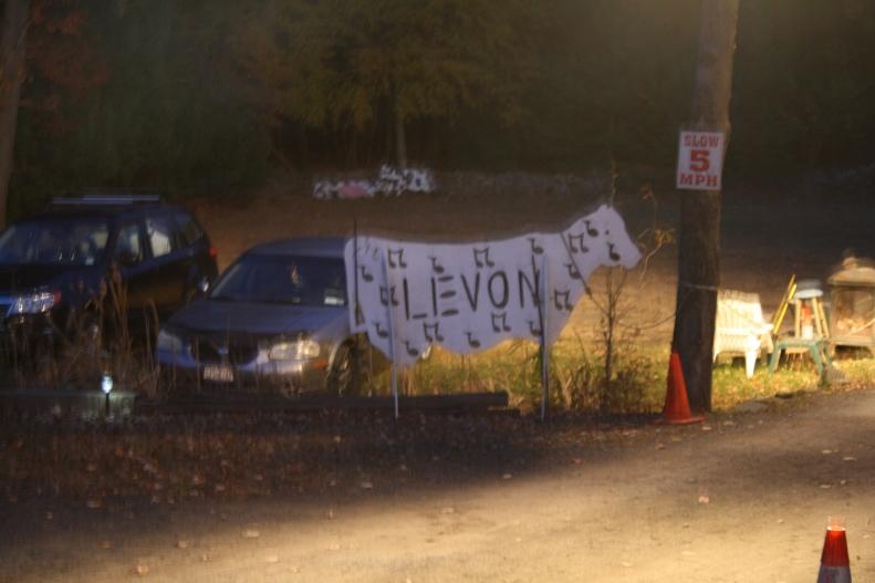 Levon's place